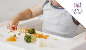 Despre alimentatia unui copil de 1 -2 ani